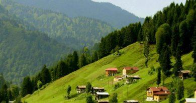 Doğu Karadeniz'e Doğa Yolculuğu