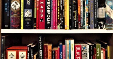 Grafik Roman Okumaları