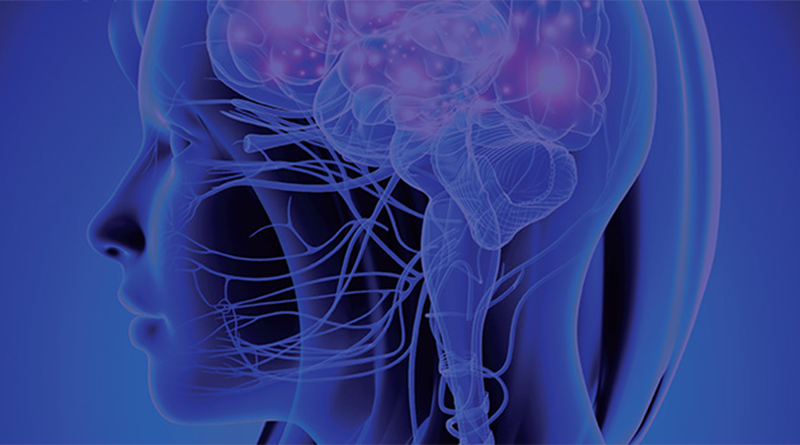 Nöro Bilim ile Geleceğinize Yön Verin